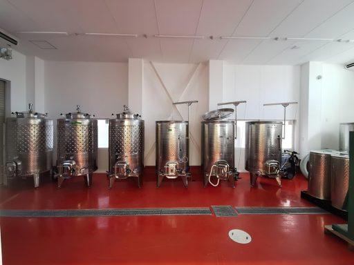 bellwood vineyard 2020 08 24 (2)