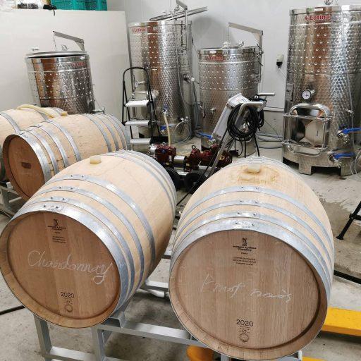 bellwood vineyard 2021 09 01 (2)