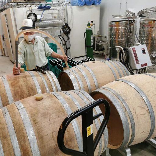 bellwood vineyard 2021 09 01 (3)