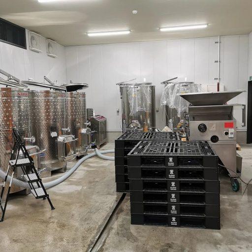 bellwood vineyard 2021 09 01 (4)