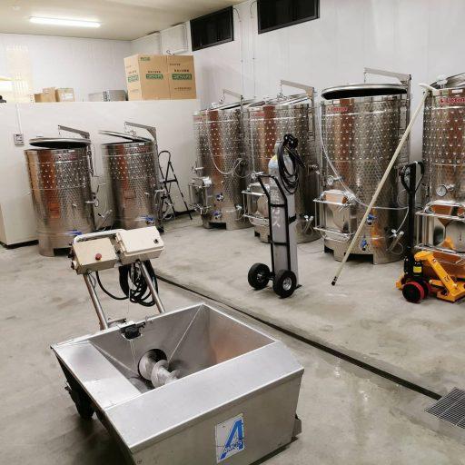 bellwood vineyard 2021 09 01 (5)
