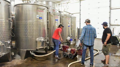 bingham family wines 2021 09 21 (1)
