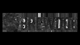 Brewdog logo.