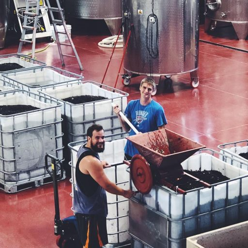 Winemakers working in Liquid Art Winery in Kansas, USA.